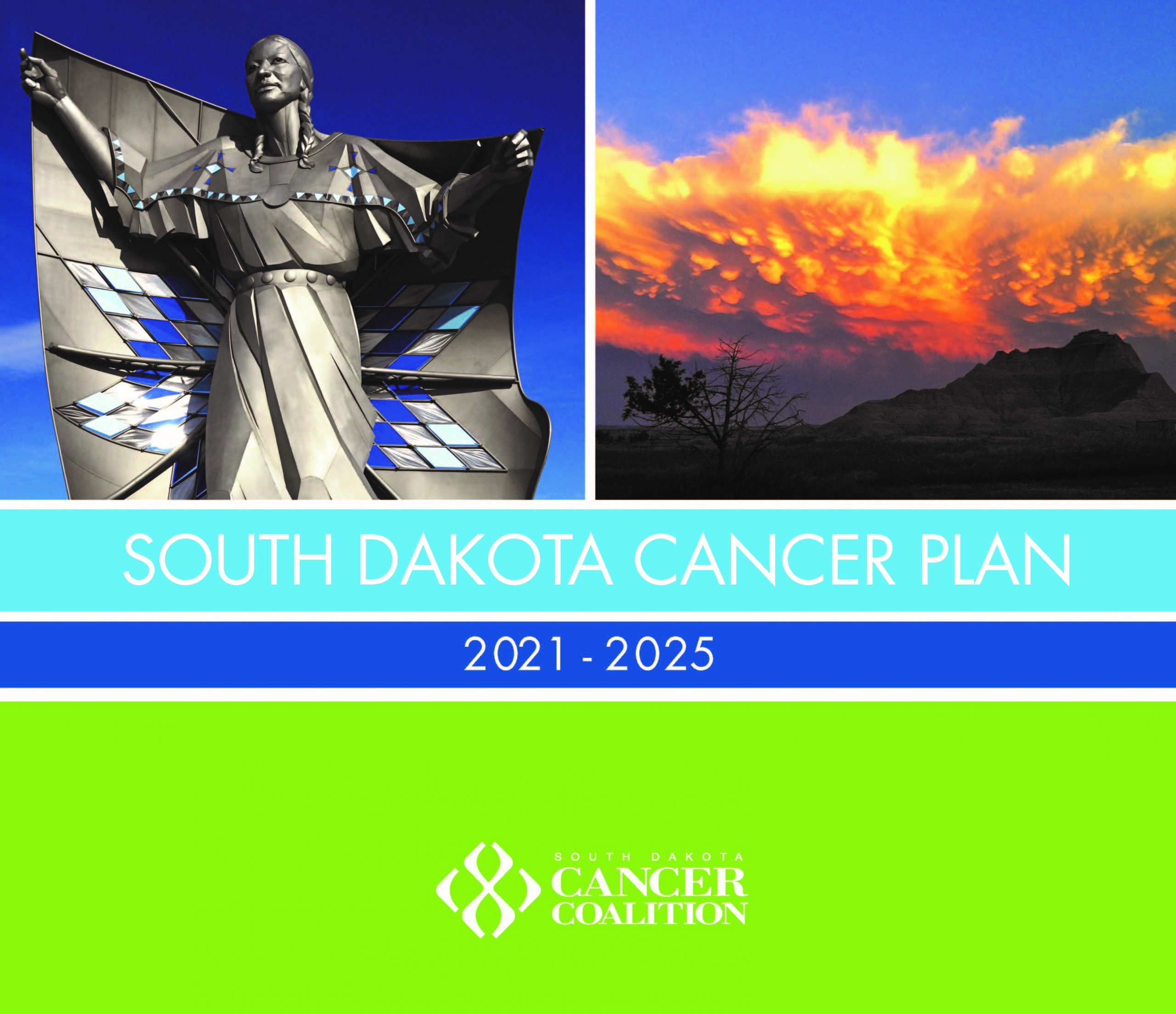 Cancer Control State Plan